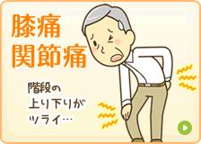 藤枝市 坂本接骨院・鍼灸院のひざ痛・関節痛