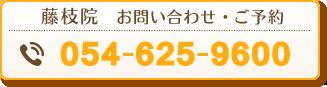 藤枝院 電話番号:054-625-9600